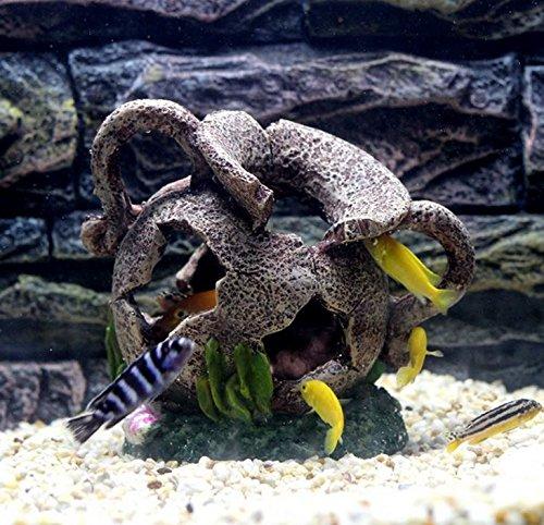 Shrimps /& Snails Love Them. Fish Turtle Hidden Bonsai beautification leoyoubei Aquarium Shape beautification Decoration